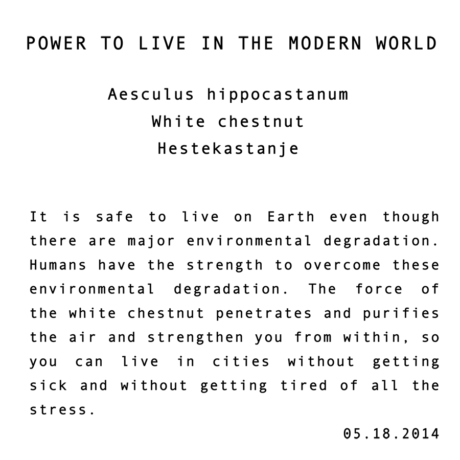 "White Chestnut"" Power To Live In A Modern World"""